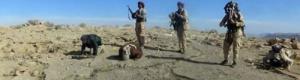 اليمن.. مقتل 19 حوثيًا في مواجهات مع الجيش بمحافظة الجوف