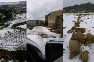 شاهد..الثلوج تتسبب بفاجعة كبيرة لأول مرة في تاريخ اليمن