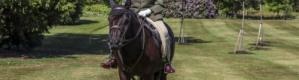 """على ظهر حصان.. أول ظهور لملكة بريطانيا منذ """"إغلاق كورونا"""""""