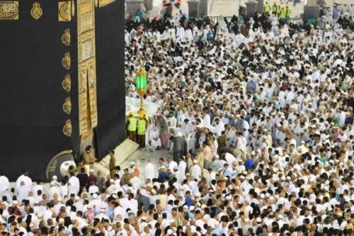 أولى قوافل ضيوف الرحمن من حجاج اليمن تدخل الأراضي المقدسة