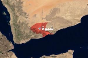 أكبر وأثقل حكم قبلي تشهده اليمن على مر التاريخ في هذه القضية