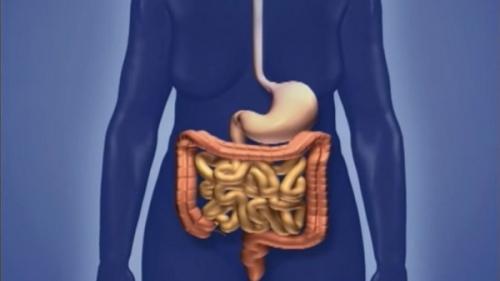 عند ظهورها يجب مراجعة الطبيب فوراً .. كشف الأعراض الرئيسية لسرطان الأمعاء