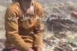 """كان يزأر مثل الأسد ثم ركب على ظهر حمار ذليلا.. شاهد """"كليب"""" الحوثيين قبل وبعد أن يقع أسيرا في يد الجيش الوطني"""