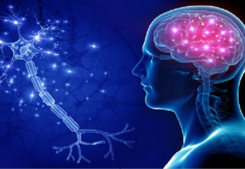 تعرف على أفضل مكمل غذائي يحافظ على الذاكرة ويجنبك النسيان ويقاوم الزهايمر..