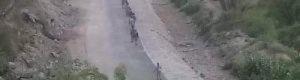 مليشيا الحوثي تقصف معسكر اللواء ١١٥ بلودر وقوات موالية للحوثي تسيطر على أجزاء من بيحان