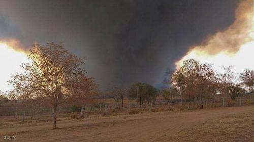 الأمطار تنقذ الغابات في بوليفيا من الحرائق