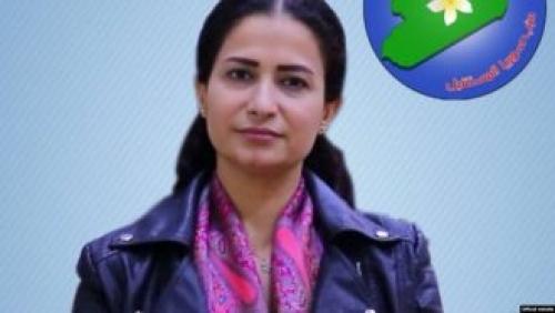 """إعدام هفرين خلف يثير الصدمة والمخاوف من عملية """"نبع السلام"""" التركية (فيديو)"""