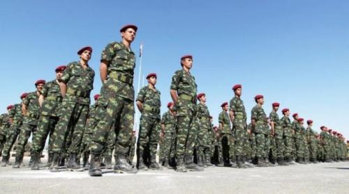 """عكاظ السعودية تكشف عن كيفية هيكلة """"الجيش اليمني"""" وعن مناصب الانتقالي في الحكومة القادمة"""