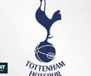 تقارير: توتنهام يخطط لتجديد عقد سون.