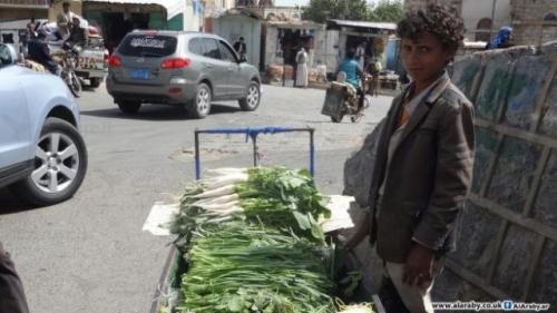 مبيدات اليمن... خضراوات وفواكه ملوّثة على الموائد