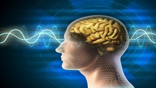 دراسة: منطقتان في الدماغ مسؤولتان عن الانتحار