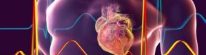 لأول مرة.. علماء يعيدون قلبًا ميتًا للحياة تمهيدًا لعملية زراعة أعضاء (شاهد الفيديو)