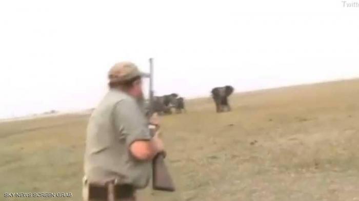 """""""رصاصة بين عينيه"""".. صيادون يقتلون فيلا والقطيع يردّ"""