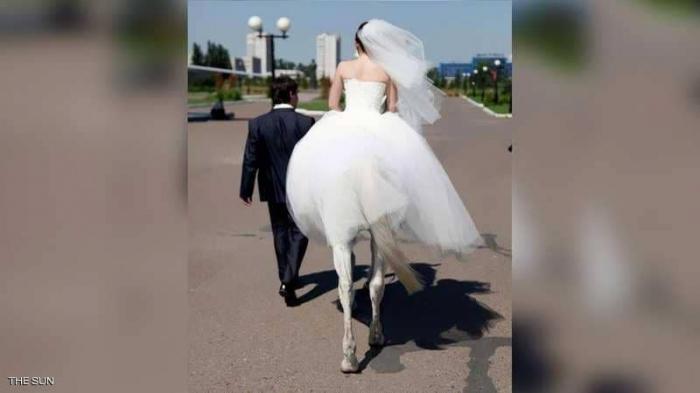 """بالصورة الواضحة : باريدوليا.. """"المرأة الفرس"""" تتزوج"""